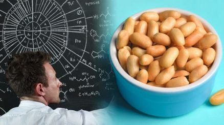 nuts and brain power