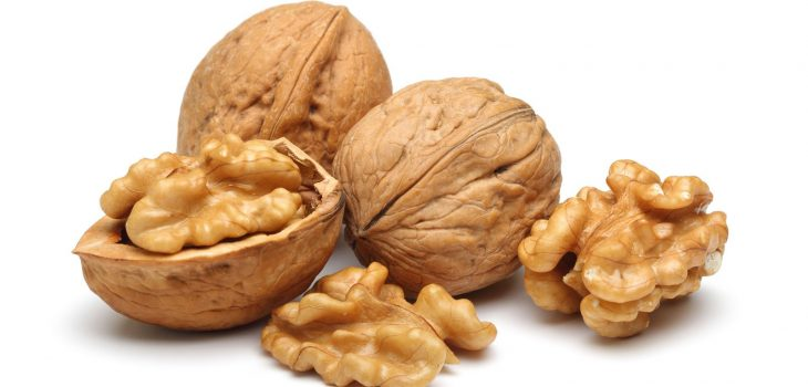walnuts and their shells