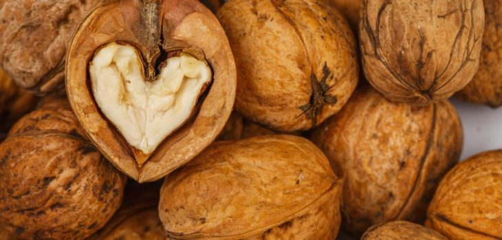 walnuts in the shape of a human heart